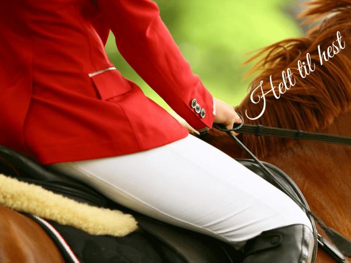 Helt til hest