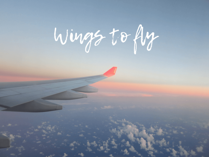Wings to fly